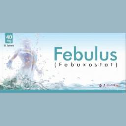 FEBULOUS 40mg Tablet 20s